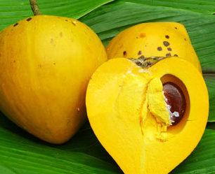 Canistel ou Sapota Amarela