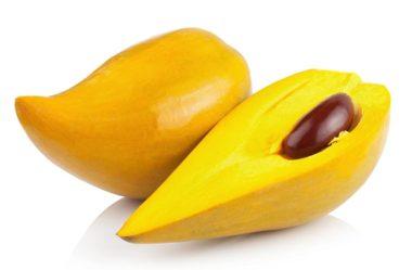 Dicas de como cultivar o canistel ou sapota amarela